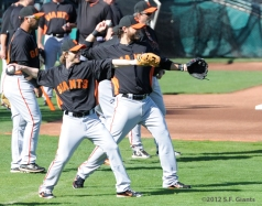 S.F. Giants, San Francisco Giants, Spring Training, Team, photo, Mike Fontenot, Brandon Crawford