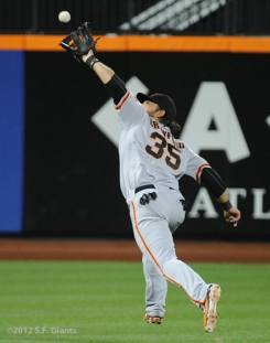 S.F. Giants, San Francisco Giants, 2012, Photo, Brandon Crawford