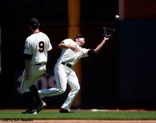 San Francisco Giants, S.F. Giants, photo, 2012, Nate Schierholtz