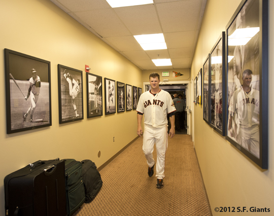 sf giants, san francisco giants, photo, 2012, matt cain, perfect game, june 13