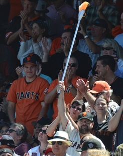 fans, sf giants, san francisco giants, photo, 2012