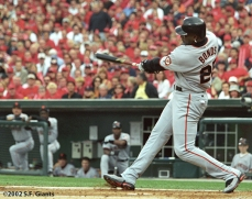 sf giants, 2002, world series, san francisco giants, photo, barry bonds