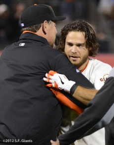 sf giants, san francisco giants, photo, 2012, brandon crawford, bruce bochy
