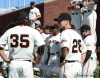 sf giants, san francisco giants, photo, 2012, team, brandon crawford, buster posey