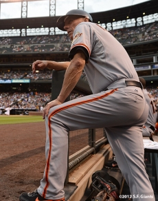sf giants, san francisco giants, photo, 2012, tim flannery
