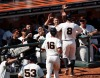 San Francisco Giants, S.F. Giants, photo, 2012, Hunter Pence