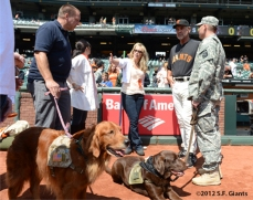 sf giants, san francisco giants, photo, 2012, dog days, burce bochy, spencer milo, jon gordon, rick yount, william gall