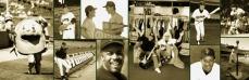 sf giants, san francisco giants, photo, 2012, view level, timeline