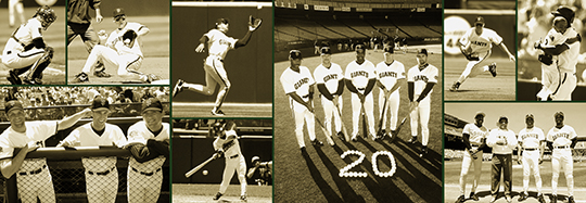 sf giants, san francisco giants, photo, 2012, view level,