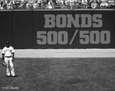 sf giants, san francisco giants, 2012, photo, view level timeline, barry bonds, 500/500