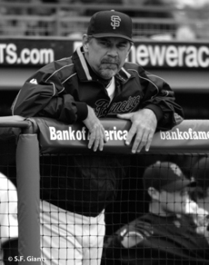 sf giants, san francisco giants, 2012, photo, view level timeline, bruce bochy