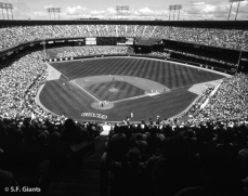 sf giants, san francisco giants, photo, 2012, timeline, view level, candlestick
