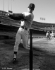 sf giants, san francisco giants, photo, 2012, view level, timeline, terry kennedy