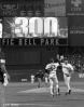 sf giants, san francisco giants, 2012, photo, view level timeline, robb nen, 2002