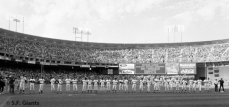 sf giants, san francisco giants, photo, 2012, view level, team
