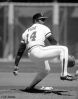 sf giants, san francisco giants, photo, view level timeline, pitchers, vida blue