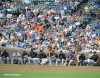 sf giants, san francisco giants, photo, 2012, wrigley field, bullpen