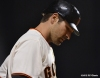 sf giants, san franciso giatns, photo, 2012, xavier nady