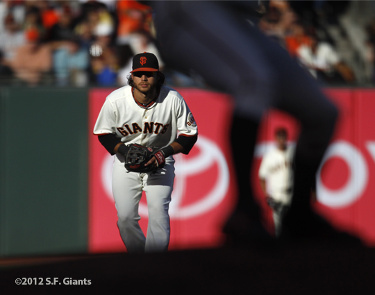 sf gaints, san francisco giants, photo, 2912, brandon crawford