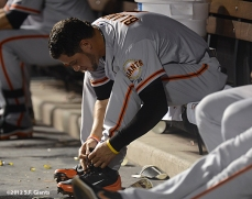 sf giants, san franciso giantsm photo, 2012, gregor boalcno