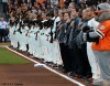 San Francisco Giants, S.F. Giants, photo, 2012, National League Division Series, Team