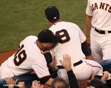 sf giants, san francisco giants, photo, 10/6/2012, nlds game 1, marco scutaro, branodn belt