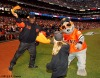San Francisco Giants, S.F. Giants, photo, 2012, Postseason, E-40, Lou Seal
