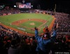 San Francisco Giants, S.F. Giants, photo, 2012, Postseason, AT&T Park