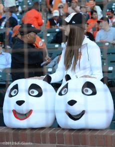 sf giants, san francisco giants, photo, 10/14/2012, nlcs game 1, panda hats, fans