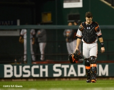 sf giants, san francisco giants, photo, 10/17/2012, nlcs game 3, buster posey