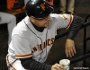 sf giants, san francisco giants, photo, nlcs, 2012, joe lefebvre