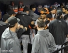 sf giants, san francisco giants, photo, 10/18/2012, nlcs game 4, team, hector sanhcez