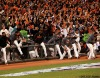 sf gaints, san francisco giants, photo, 10/21/2012, nlcs game 6, fans, team