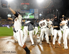 sf giants, san francisco giants, photo, 10/22/2012, nlcs game 7, clinch, team