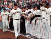 San Francisco Giants, S.F. Giants, photo, World Series, Matt Cain