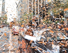 sf giants, san francisco giants, photo, parade, 10/31/2012, george kontos