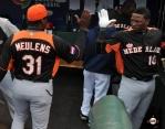 2013 world baseball classic, netherlands, dominican republic, AT&T Park, bambam meulens, jurickson profar