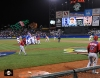 sf giants, 2013 world baseball classic, dominican republic, puerto rico, team