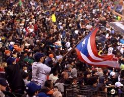 WBC, Puerto Rico, Japan, AT&T Park, San Francisco, Giants,