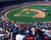 San Francisco Giants, S.F. Giants, photo, 1983, Charlie Daniels
