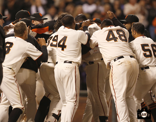 San Francisco Giants, S.F. Giants, photo, 2013, Team