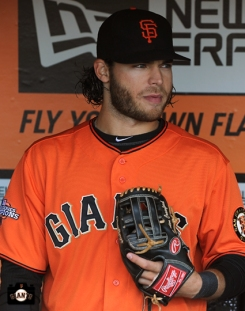 San Francisco Giants, S.F. Giants, photos, 2013, Brandon Crawford