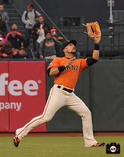 San Francisco Giants, S.F. Giants, photos, 2013, Andres Torres