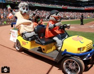 .F. Giants, photo, 2013, Lou Seal
