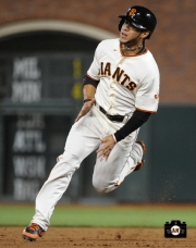 sf giants, photo, may 29, 2013,