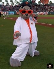 San Francisco Giants, S.F. Giants, photo, 2013, Bruce Lee, Lou Seal