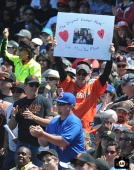 2013, sf giants, photo, june 5, fans