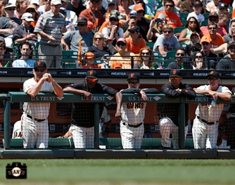 july 21, 2013, sf giants, photo,