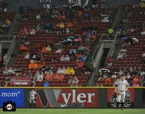 fans, july 1, 2013, sf giants, photo, cincinnati reds