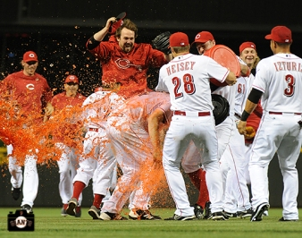 july 2, 2013, sf giants, photo, homer bailey, no hitter,